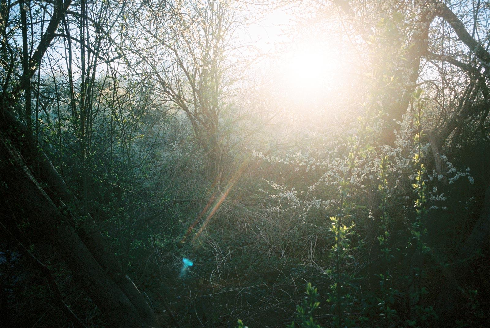 Photography by Ian Watts